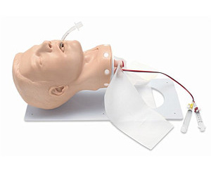 Adult Deluxe Airway Head