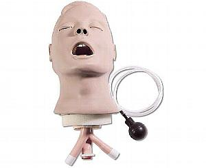 Life form Airway Larry Adult Airway Management Trainer Head